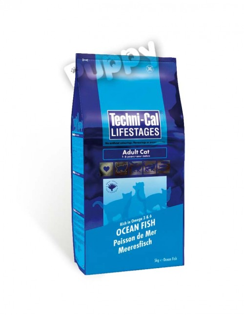 adult_techni-cal_ocean-fish copy