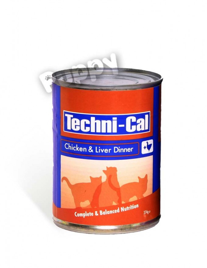 technical_chicken copy