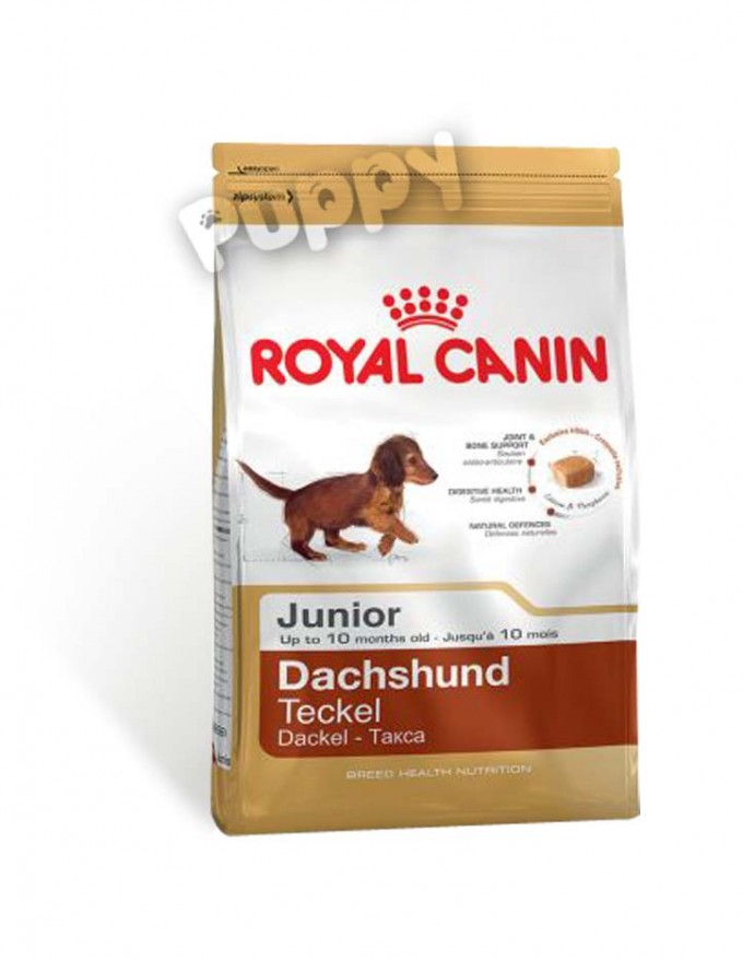 1 5 royal canin dachshund teckel junior puppyshop. Black Bedroom Furniture Sets. Home Design Ideas
